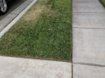 Order Lawn Care in Grayson Ca, CA, 95363