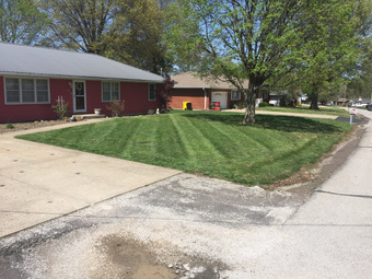 Order Lawn Care in Grain Valley , MO, 64029