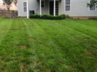 Order Lawn Care in Clover, SC, 29710