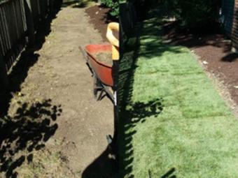 Order Lawn Care in Bolingbrook , IL, 60440