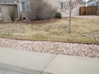 Order Lawn Care in Lochbuie, CO, 80603