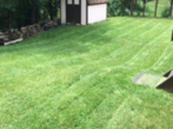 Order Lawn Care in Bethel Park, PA, 15102