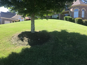 Order Lawn Care in Powder Springs , GA, 30127