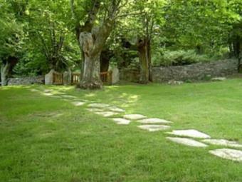 Order Lawn Care in Lewisburg , TN, 37091