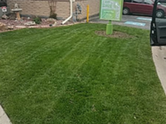 Order Lawn Care in Arvada, CO, 80002