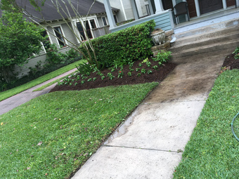 Order Lawn Care in Houston , TX, 77022
