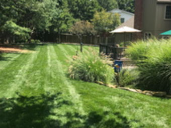 Order Lawn Care in Prairie Village, KS, 66207