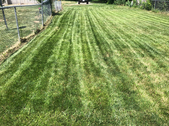 Order Lawn Care in Kansas City, MO, 64110