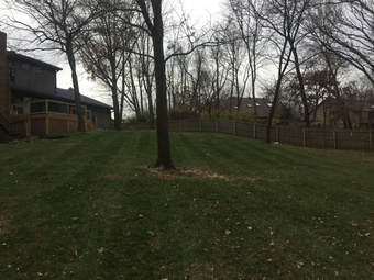 Order Lawn Care in Kansas City, MO, 64118