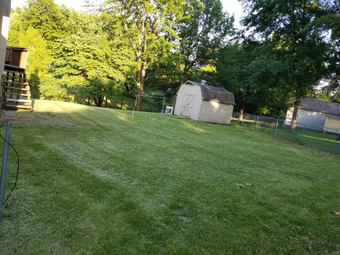 Order Lawn Care in Gladstone, MO, 64118