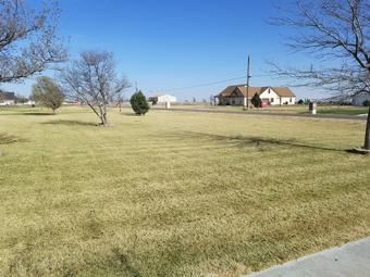 Order Lawn Care in Amarillo, TX, 79106