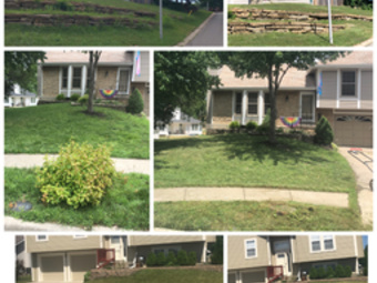 Order Lawn Care in Kansas City , MO, 64116