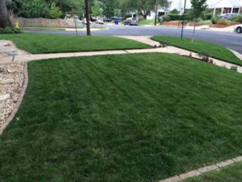 Order Lawn Care in Carpentersville, IL, 60110