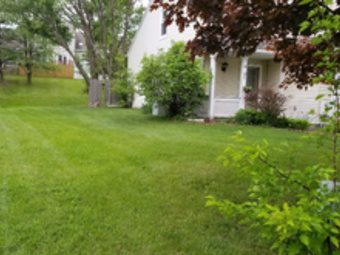Order Lawn Care in Watervliet, NY, 12189