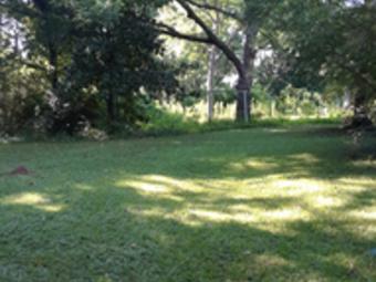 Order Lawn Care in Decatur, GA, 30032