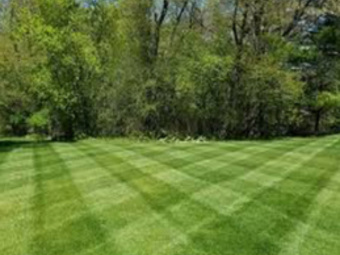 Order Lawn Care in Bedford, TX, 76022