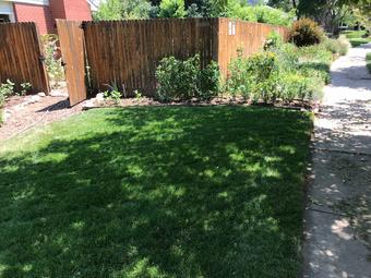 Order Lawn Care in Denver, CO, 80235