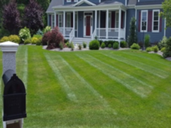 Order Lawn Care in Westminster , CO, 80021