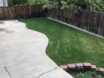 Order Lawn Care in Longmont, CO, 80501