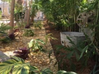 Order Lawn Care in Miami, FL, 33167