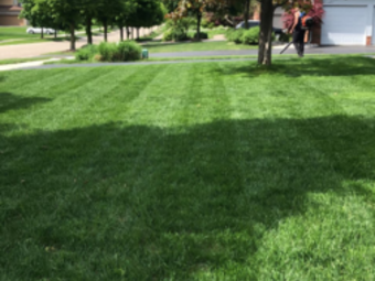 Order Lawn Care in Charter Township Of Clinton, MI, 48035