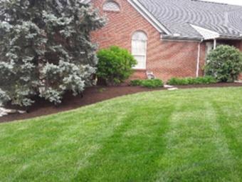 Order Lawn Care in Cincinnati, OH, 45238
