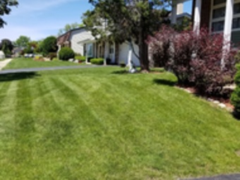Order Lawn Care in Roselle, IL, 60172