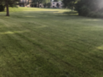 Order Lawn Care in Round Lake, IL, 60073