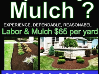Order Lawn Care in Aurora, IL, 60505