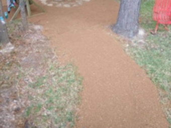 Order Lawn Care in Willis, TX, 77318