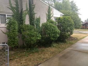 Order Lawn Care in Clinton Township, MI, 48038