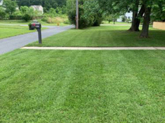 Order Lawn Care in Riviera Beach, MD, 21226