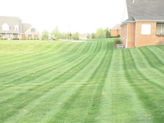 Order Lawn Care in Jamestown, NC, 27282