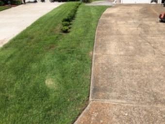 Order Lawn Care in Portsmouth, VA, 23703