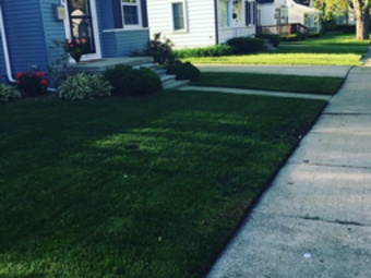 Order Lawn Care in Detroit, MI, 48235