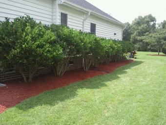 Order Lawn Care in Virginia Beach, VA, 23456
