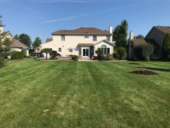 Order Lawn Care in Cleveland, OH, 44102