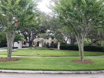 Order Lawn Care in Clearwater, FL, 33709