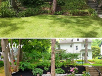 Order Lawn Care in Cincinnati, OH, 45204