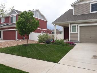 Order Lawn Care in Denver, CO, 80236