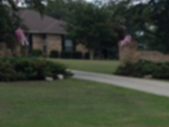 Order Lawn Care in Jemison, AL, 35085