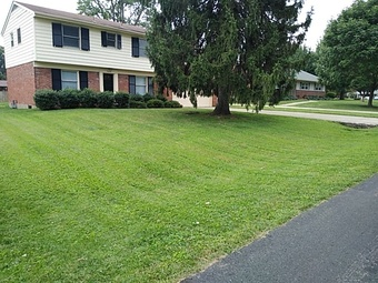Order Lawn Care in Louisville, KY, 40208