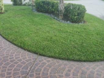 Order Lawn Care in Pompano Beach, FL, 33060