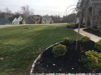 Order Lawn Care in Wingate, NC, 28174