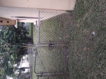 Order Lawn Care in Miami, FL, 33150