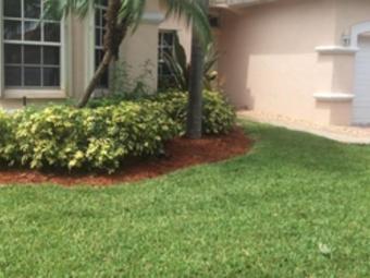 Order Lawn Care in Pembroke Pines, FL, 33027