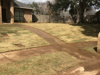Order Lawn Care in Shady Shores, TX, 76208