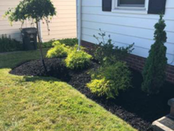 Order Lawn Care in Parma, OH, 44134