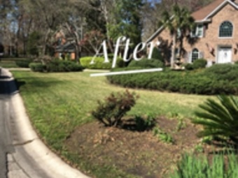 Order Lawn Care in Summerville, SC, 29483