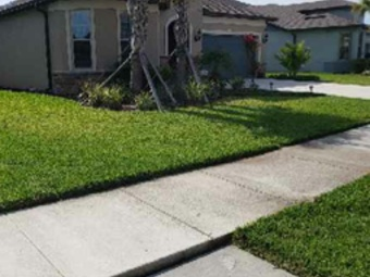 Order Lawn Care in Spring Hill, FL, 34610